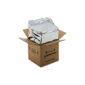 Small Insulated Shipping Box